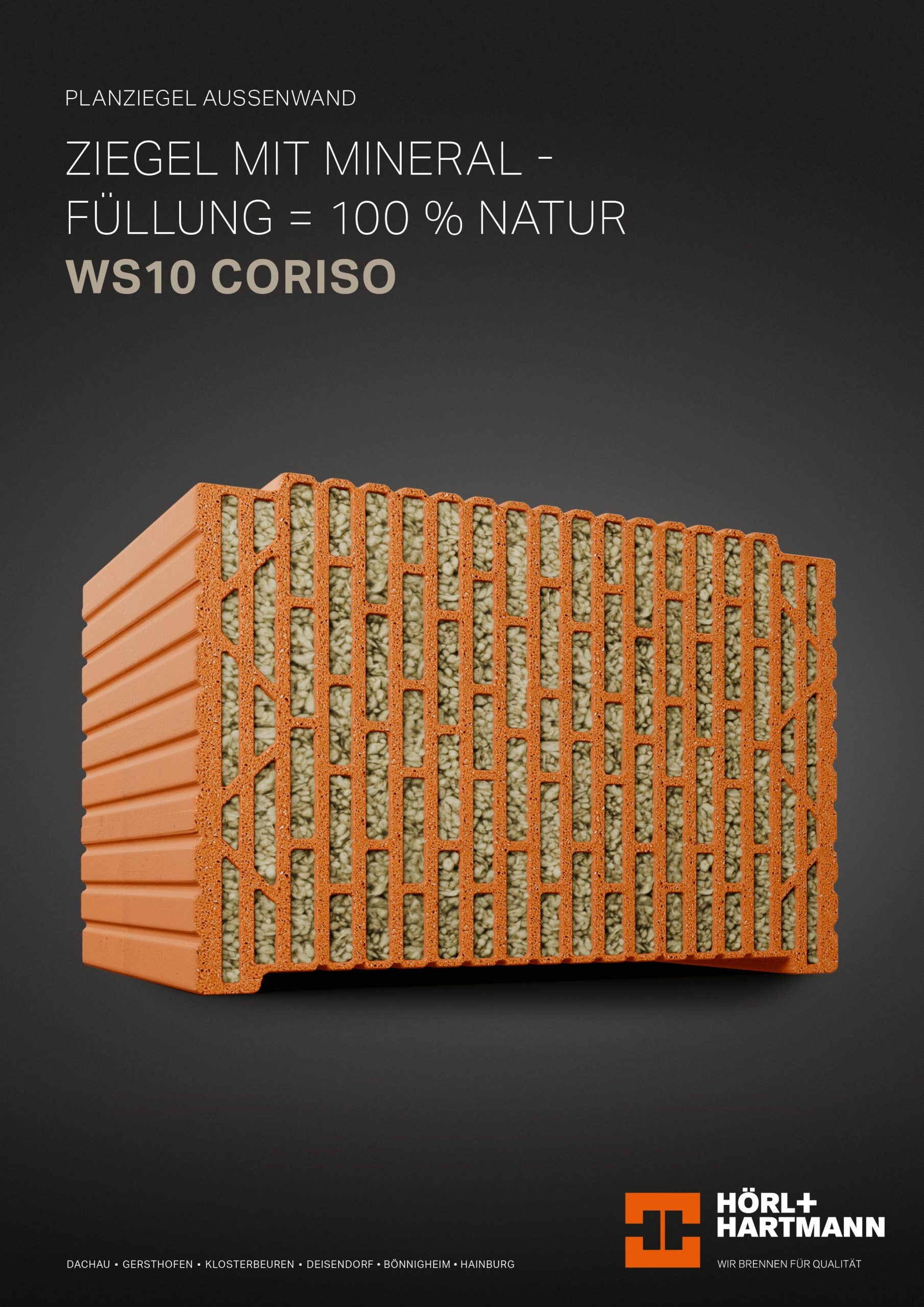Datenblatt WS10 CORISO